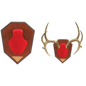 Allen Antler Mounting Kit - Red Skull