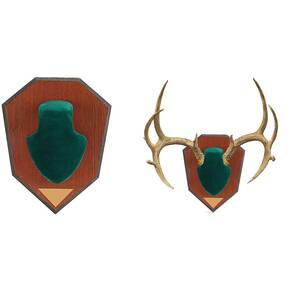 Allen Antler Mounting Kit - Green Skull