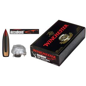 Winchester AccuBond CT Rifle Ammunition .300 Win Mag 180 gr AB 2950 fps - 20/box