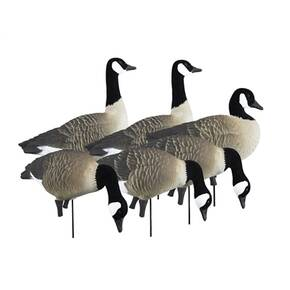 Higdon Outdoors APEX Full-Size Full-Body Variety Pack - Canada Goose