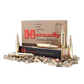 Hornady Custom Rifle Ammunition .350 Legend 165 gr FTX 2200 fps 20/ct