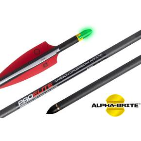 "Ten Point Pro Elite Alpha-Brite Carbon Arrows 20"" with Molded ALPHA Brite Nocks 3/pk"